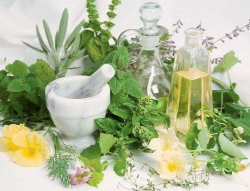 Gyógynövények a kozmetikában